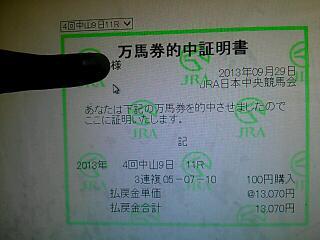 rps20131231_201338_871.jpg